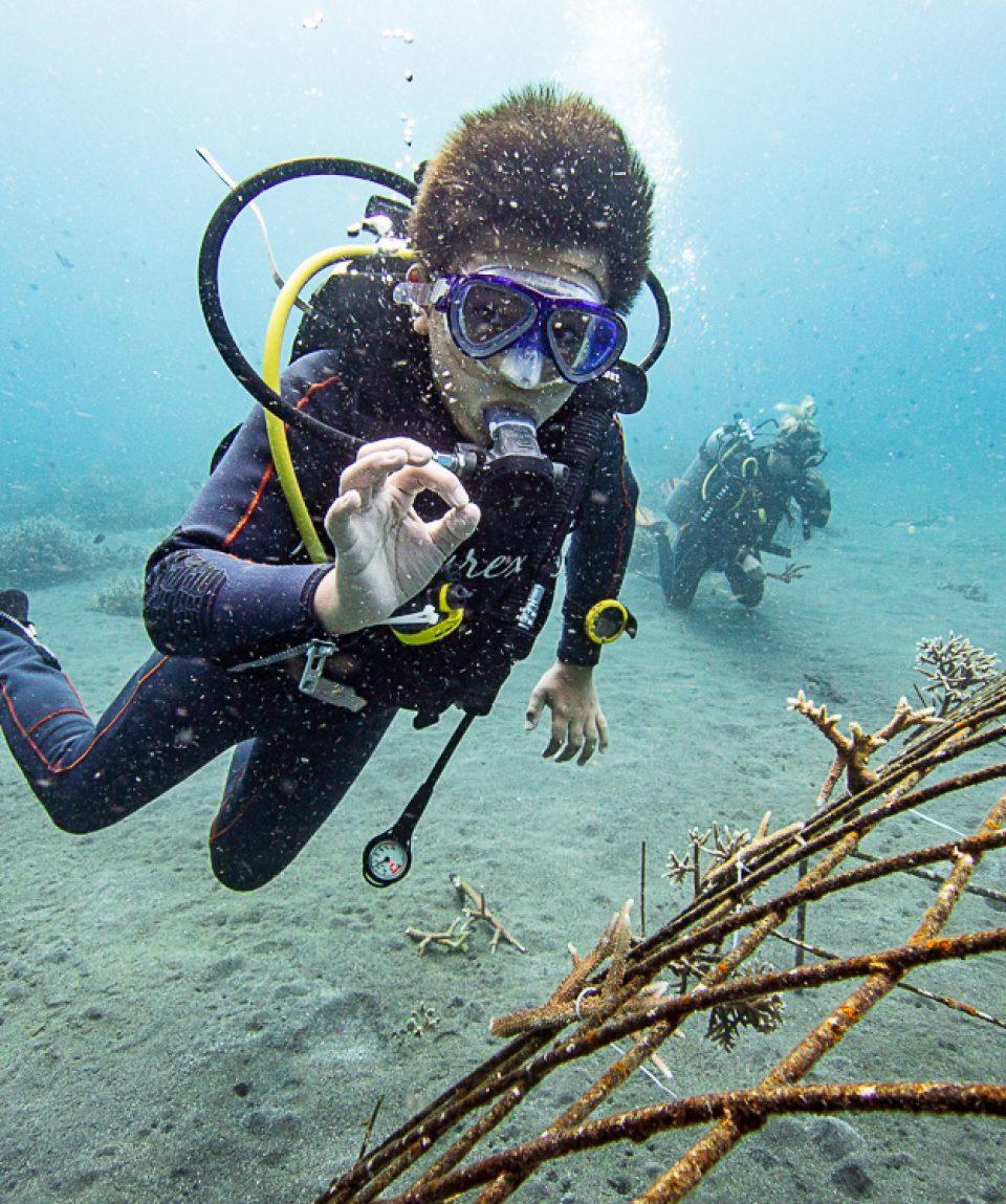 Discover Coral Diving Manado Course
