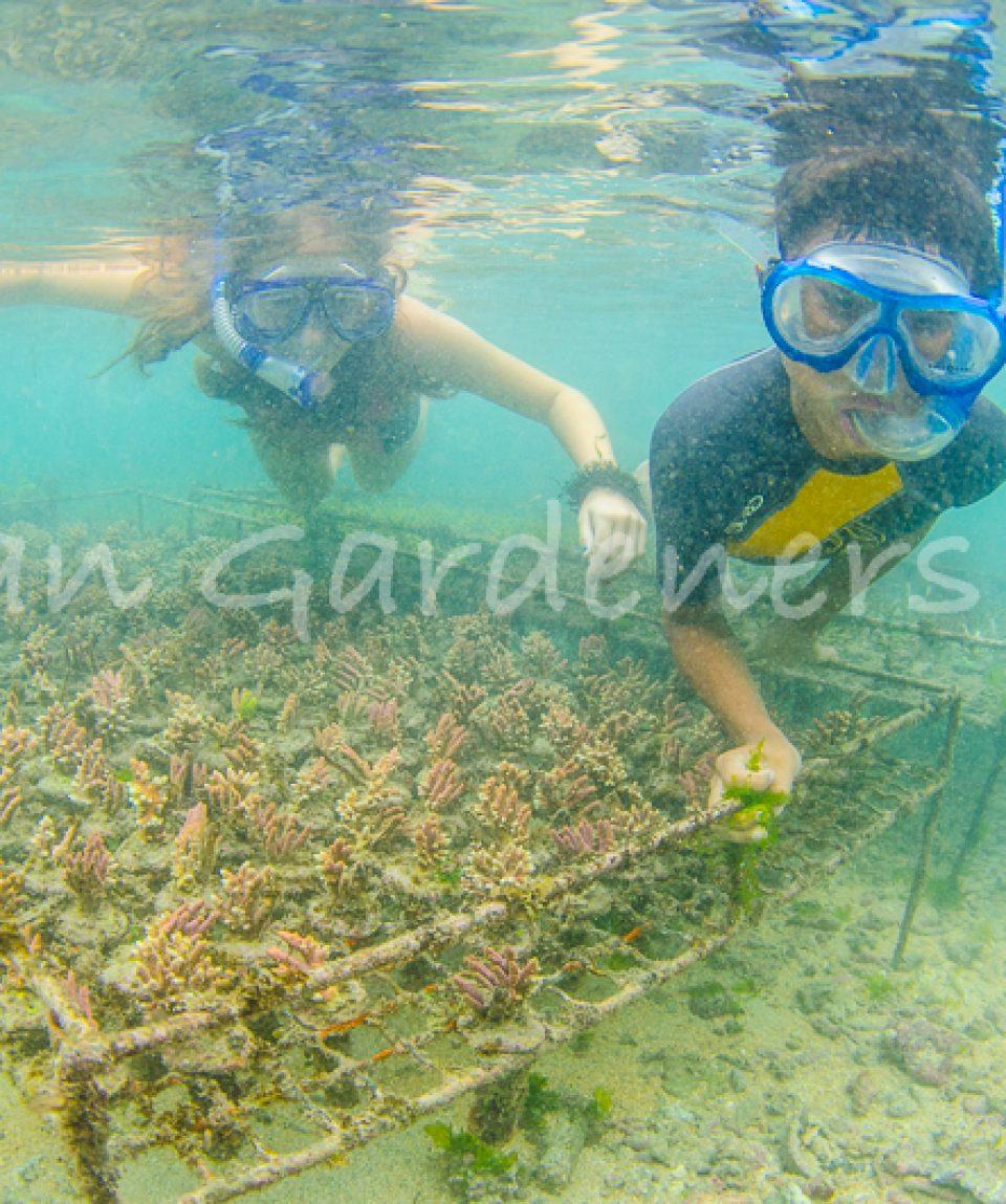 Ocean Gardener Farm-34
